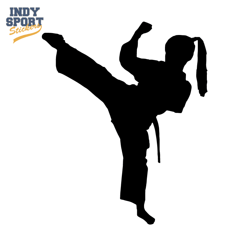 martial arts karate female girl kicking silhouette indy martial arts clipart this computer martial arts clip art free