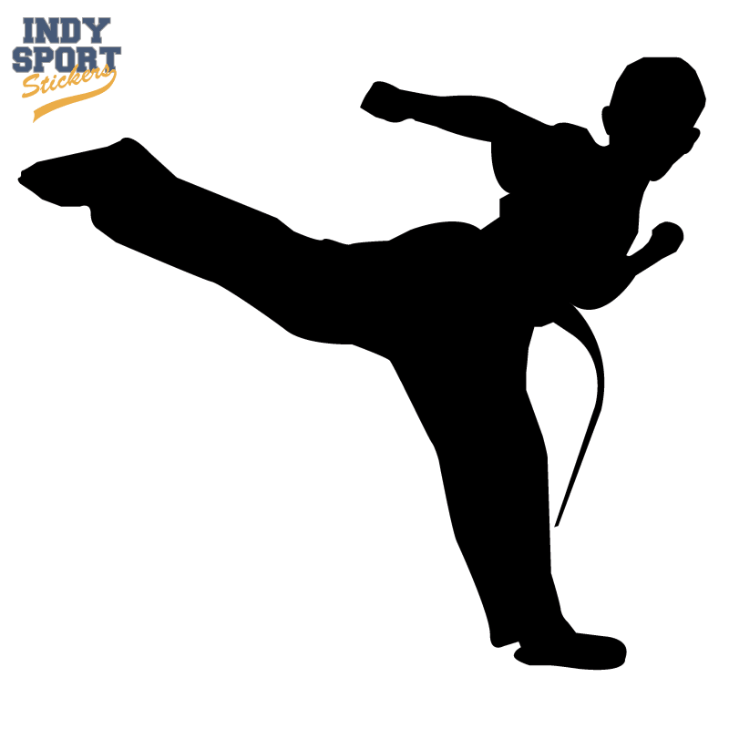 Martial Arts Karate Male Boy Kicking Silhouette Indy Sport Stickers