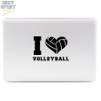 Decal-SC-Volleyball-0022-03